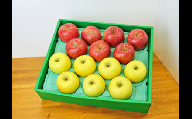 916-003 サンふじりんご&シナノゴールド 5kg(13~16玉)※11月下旬~12月下旬頃より順次発送予定