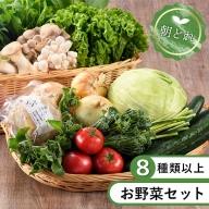 53-01_安心安全!本日のお野菜詰め合わせ【8種類以上】