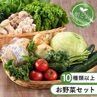 53-11_安心安全!本日のお野菜詰め合わせ【10種類以上】