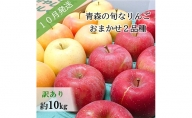 【先行予約】【訳あり】10月 旬の美味しいりんご約10kg【おまかせ2品種】【青森りんご】