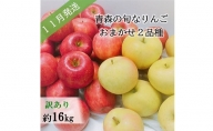【先行予約】【訳あり】11月 旬の美味しいりんご約16kg【おまかせ2品種】【青森りんご】