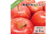 【先行予約】【訳あり】11月 旬の美味しいりんご約5kg【おまかせ1品種】【青森りんご】