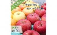 【先行予約】【訳あり】11月 旬の美味しいりんご約10kg【おまかせ2品種】【青森りんご】