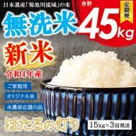 AG29  <先行予約>令和3年産新米 熊本県産 無洗米 ほたるの灯り 13kg