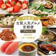 【定期便(9回発送)】古賀人気グルメ定期便 ブロンズ