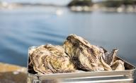 ●先行予約●山銀商店 かんかん焼(殻付き大粒 牡蠣 20個)