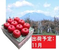 11月  サンふじりんご「特A」約3kg 糖度13度以上 【森山商店・平川市産・青森りんご・11月】