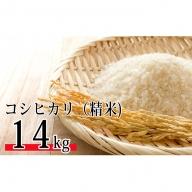 SWANの特選米 コシヒカリ(精米14kg)【平成30年度新米】