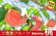 I-182-2 長野県中野市産 桃【秀品】5kg (12-20玉)