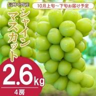I-174-2 信州中野産シャインマスカット【4房】