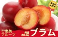 I-182-4 長野県中野市産 プラム【秀品】約3.5kg(350g×10パック)
