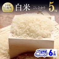 令和3年産 ☆早場米☆ こしひかり(有洗米) 定期便 (5kg ×6ヶ月)
