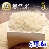 令和3年産 ☆早場米☆ こしひかり(無洗米) 定期便 (5kg×6ヶ月)