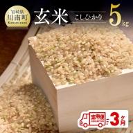 令和3年産 ☆早場米☆ 玄米(こしひかり) 定期便(5kg×3ヶ月)