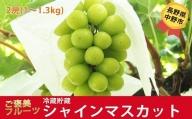 I-182-1 長野県中野市産 冷蔵貯蔵シャインマスカット2房 化粧箱入り