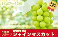 I-182-5 長野県中野市産 シャインマスカット【秀品】約5kg(7-12房)