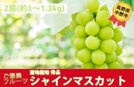 I-182-6 長野県中野市産 シャインマスカット【秀品】2房 化粧箱入