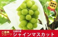 I-182-11 長野県中野市産 冷蔵貯蔵シャインマスカット 約5kg