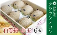 クラウンメロン 並 (白) 1.3kg 6玉