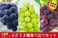 I-182-7 長野県中野市産 ぶどう3種食べ比べセット 約5kg(7-12房)
