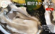 北海道サロマ湖産 殻付きかき(生食用)3.5kg