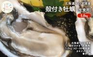 北海道サロマ湖産 殻付きかき(生食用)6kg
