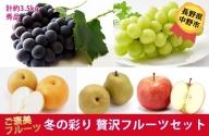 I-182-9 長野県中野市産 冬の彩り<贅沢フルーツ>セット
