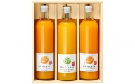 K6101_和歌山みかんジュース2種類セット(750ml×3本入)果汁100% 無添加ストレート