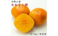 ZD92059_【秋の味覚】和歌山産のたねなし柿ご家庭用約7.5kgサイズ混合  ※着日指定不可