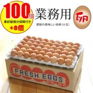 A8-102 業務用卵(100個+破損保証卵8個入り)ダンボール送り