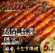 C82 《期間・数量限定》うなぎ蒲焼5尾(計1,000g以上)国産鰻(ウナギ・さんしょう・たれセット)