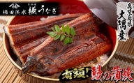 b5-004 楠田の極うなぎ蒲焼き 大 4尾