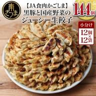 【JA食肉かごしま】黒豚と国産野菜のジューシー生餃子144個 たれ付き!(12個×12P)
