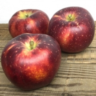 I-193-16 <家庭用>葉とらずりんご「秋映」約3kg