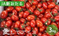 北海道仁木産ミニトマト【愛してアイコ】3kg
