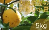 【AE-38】訳あり柑橘「小夏(こなつ)」5kg(大崎農園)