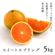 14-01_希少柑橘「スイートスプリング」5kg(化粧箱入り)【先行予約】