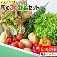 野菜ソムリエが選ぶ 旬のこゆ野菜セット6ヵ月コース 定期便【C77】