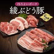 22-12_綾ぶどう豚お楽しみ5種詰め合わせセット【お届け日時指定可】