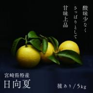 14-21_日向夏(種あり)5kg