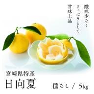 14-23_日向夏(種なし)2.5kg×2箱