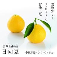 14-22_初春の旬「日向夏」種が少ない5kg【先行受付】2022年発送