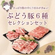 22-11_綾ぶどう豚セレクション6種セット計1.7kg【お届け日時指定可】