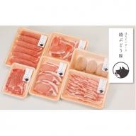 22-01_綾ぶどう豚セレクションセット