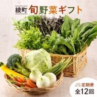 04-03_綾町旬野菜ギフト(12か月定期便)
