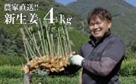 【先行予約】農家直送!秋の新生姜 4kg