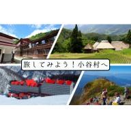 小谷村宿泊補助券80,000円分