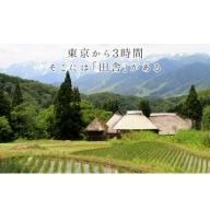 小谷村宿泊補助券95,000円分