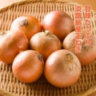BYF9:淡路島産 玉ねぎ 10kg(5kg×2箱)
