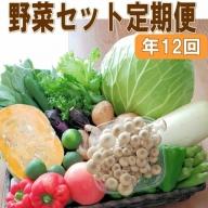 定期便 旬の新鮮野菜セットA【毎月お届け12回】たっぷり15品以上